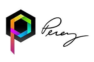 PEREY Research & Consulting logo