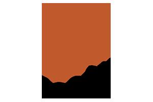 Pison logo